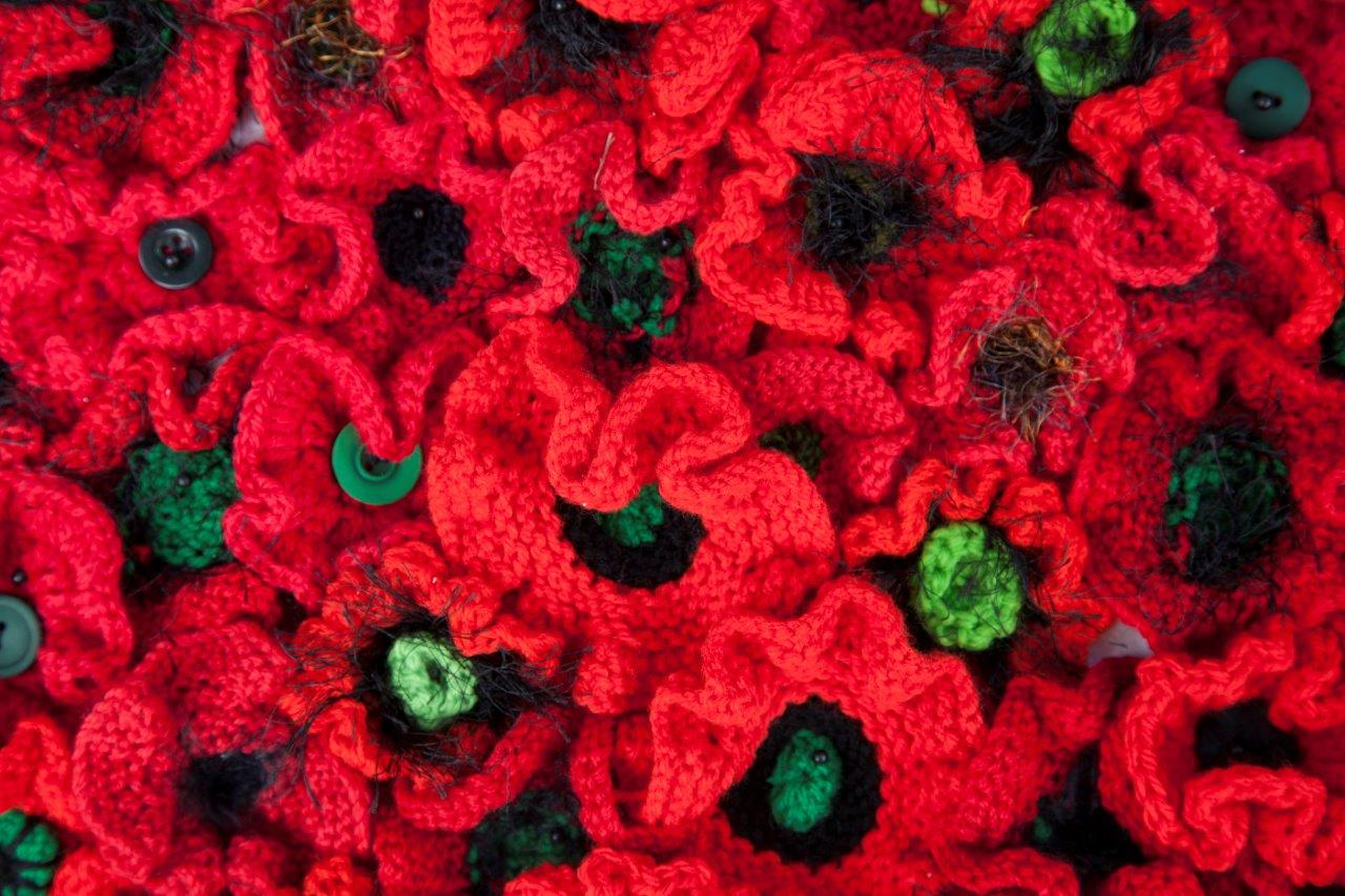 Knitting Pattern For Anzac Poppies : MEETING REPORT. Sept 10th Poppies and more The Middleton ...