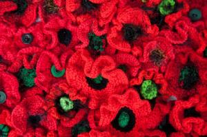 Knitted Poppies Photo by Barb Madden